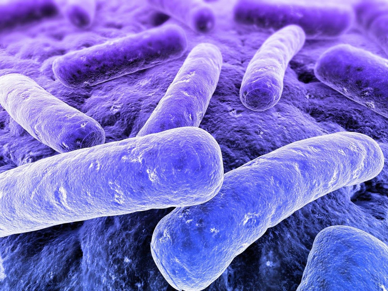 Infezioni da CD+ durante terapie antibiotiche: pubblicata nostra casistica.