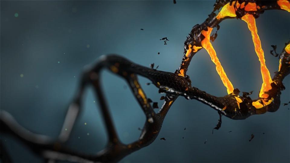 La povertà modifica il nostro patrimonio genetico?